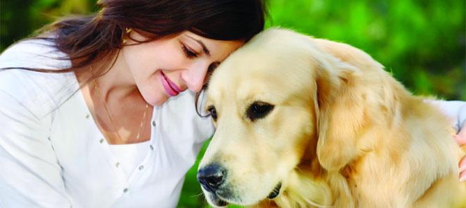 datingapp tinder honden