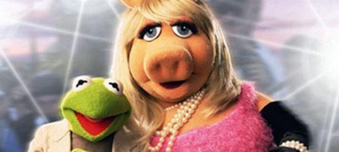 muppets scheiden