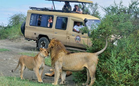 fotoreis tanzania groepsreis